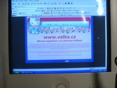 Online pujcka pred výplatou přibyslavu